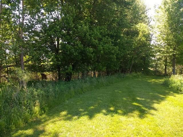 Corner Of Sage & Buffalo Roads, Bertrand Twp, MI 49107 (#68021021094) :: Alan Brown Group