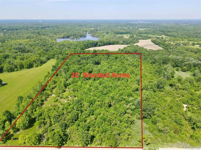 8881 Rushton Rd S, Northfield Twp, MI 48178 (#2210043114) :: Real Estate For A CAUSE