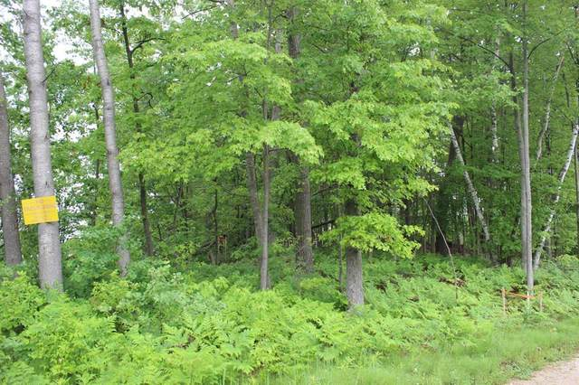 Parcel A East Suwanee Trail, Winfield Twp, MI 49329 (#71021021434) :: Real Estate For A CAUSE