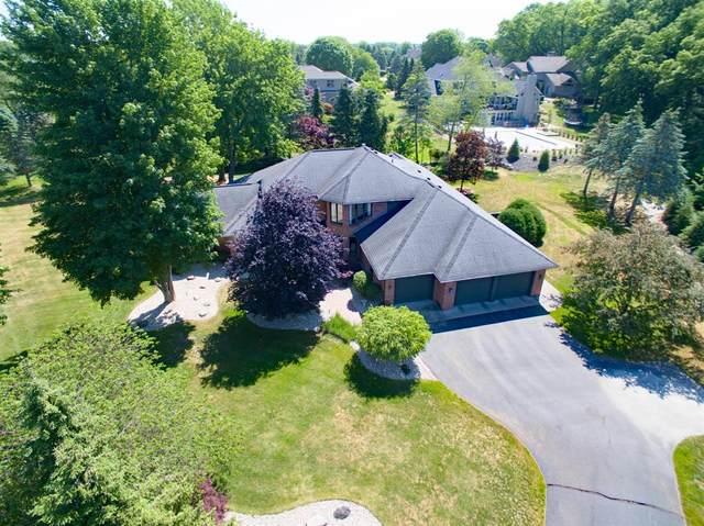 7355 Oak Shore Drive, Portage, MI 49024 (#66021021585) :: Real Estate For A CAUSE