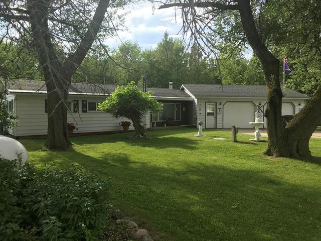 10041 Neil Drive, Belvidere Twp, MI 48886 (#72021021671) :: Real Estate For A CAUSE