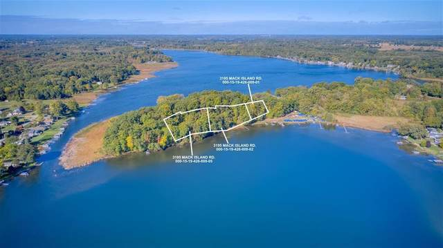 Parcel C Mack Island Rd, Napoleon, MI 49240 (#55202101758) :: Duneske Real Estate Advisors
