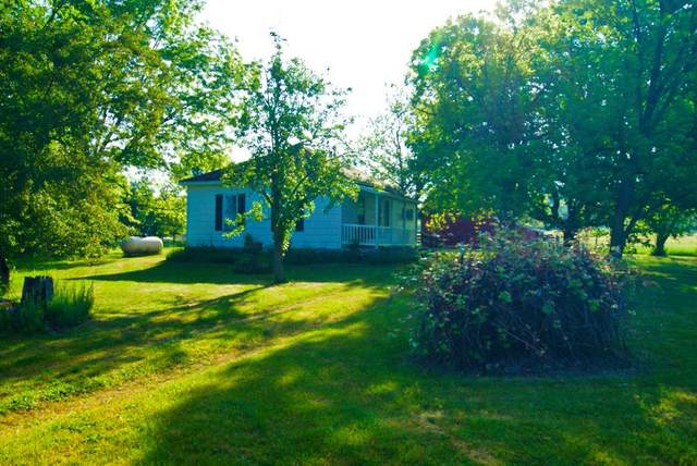 13930 #2 55th Avenue, SHERIDAN TWP - MECOSTA, MI 49340 (#72021021773) :: Real Estate For A CAUSE