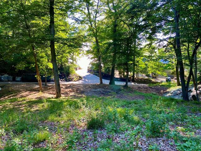 345 Dunegrass Drive, Saugatuck, MI 49453 (#71021021930) :: Real Estate For A CAUSE