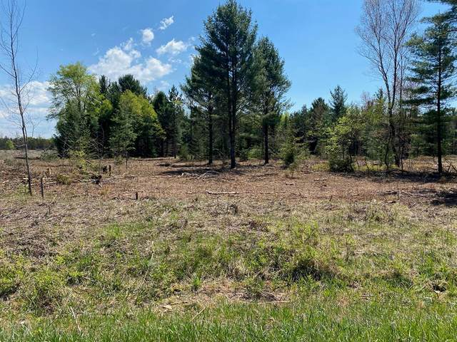 Treml Rd Parcel C-1, Grant Twp-Mason Co, MI 49411 (#67021021989) :: Real Estate For A CAUSE