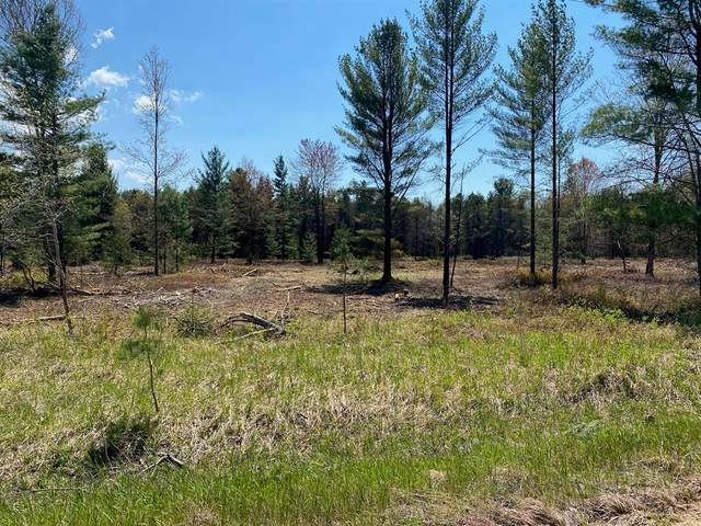 Treml Rd Parcel C-2, Grant Twp-Mason Co, MI 49411 (#67021021988) :: Real Estate For A CAUSE