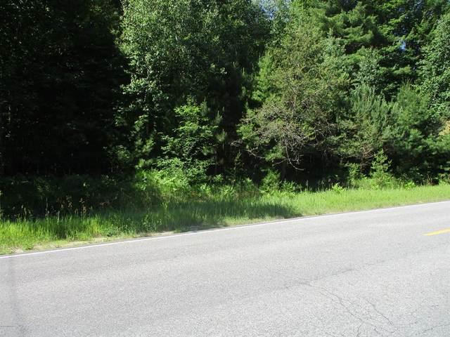 Norconk Road, Pleasanton Twp, MI 49614 (#67021022097) :: Alan Brown Group