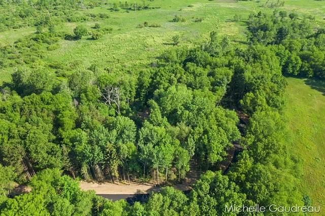 VL Flat Creek Ct, Parcel 4, Irving Twp, MI 49333 (#65021022318) :: RE/MAX Nexus