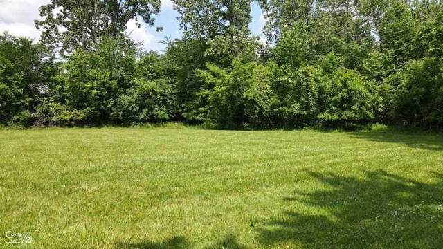5575 E 14 MILE, Sterling Heights, MI 48310 (#58050044890) :: Alan Brown Group