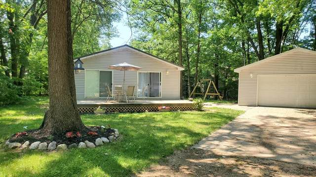 8113 Chippewa Court, Winfield Twp, MI 49329 (#72021022409) :: Real Estate For A CAUSE