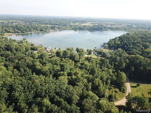 0 Idle Hills Drive, NORVELL TWP, MI 49230 (#2210045784) :: Real Estate For A CAUSE