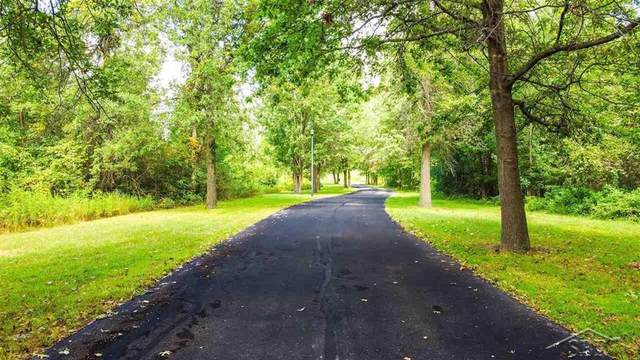 Parcel D Northern Pintail, Richland Twp, MI 48626 (#61050045063) :: The Mulvihill Group