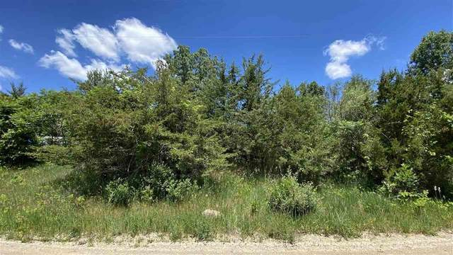 0 Penlawn Dr, Somerset, MI 49249 (#55202101851) :: Real Estate For A CAUSE