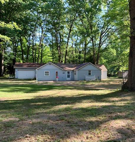 6038 W Bryant Road, Pere Marquette Twp, MI 49431 (#67021023138) :: Alan Brown Group