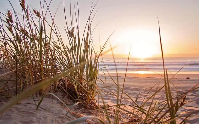 Lot 1 Saugatuck Beach Road, Saugatuck Twp, MI 49453 (#71021023279) :: Alan Brown Group