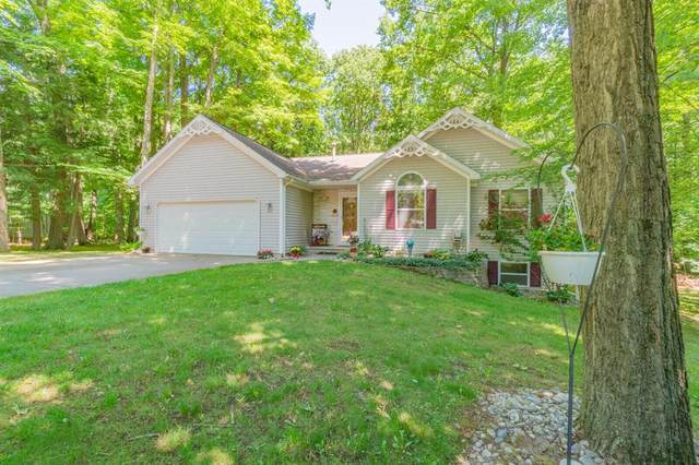 1411 Nellie Lane, Tyrone Twp, MI 49330 (#71021023405) :: Real Estate For A CAUSE
