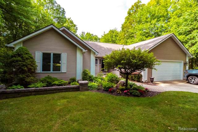 12415 Buggy Whip Court, Springfield Twp, MI 48350 (#2210047426) :: GK Real Estate Team