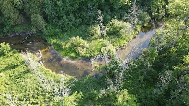 12952 Bowen Lake Drive, Spencer Twp, MI 49326 (#65021023767) :: Duneske Real Estate Advisors