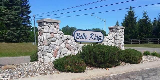 vac Belle Ridge, Dryden, MI 48428 (#58050045951) :: RE/MAX Nexus