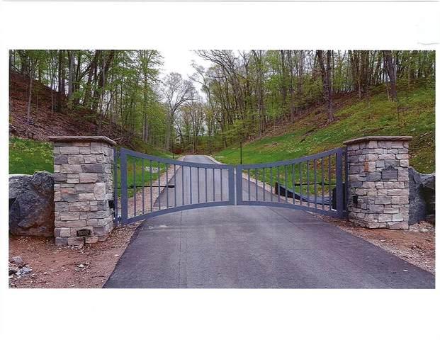 Lot 10 Triple Oak Trail, Lowell Twp, MI 49331 (#65021023958) :: Alan Brown Group