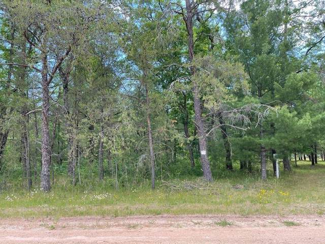 7078 S Nelson Road, Yates Twp, MI 49623 (#72021024178) :: Real Estate For A CAUSE