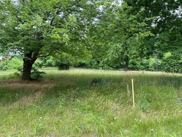 0 Ironwood Drive, MILTON TWP, MI 49120 (#69021024190) :: The Vance Group | Keller Williams Domain