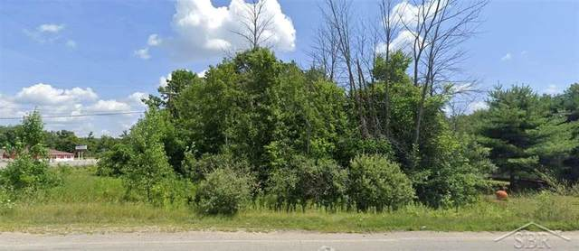 41 S Coleman Road, Greendale Twp, MI 48858 (#61050046214) :: Real Estate For A CAUSE