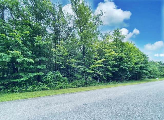 W Orchard Avenue, Watervliet Twp, MI 49098 (#69021024782) :: Real Estate For A CAUSE