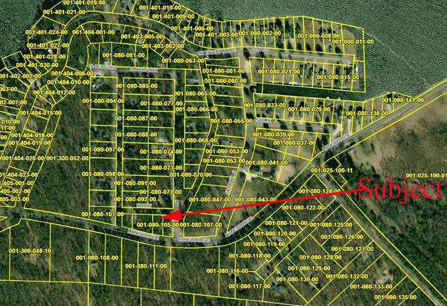 Crow Lane, Pentwater Twp, MI 49449 (#67021025915) :: The Vance Group | Keller Williams Domain