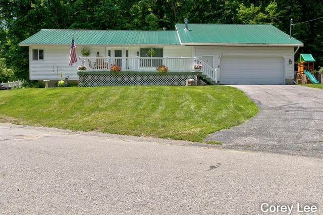 6832 Paradise Park, Boston Twp, MI 48881 (#65021026025) :: Real Estate For A CAUSE
