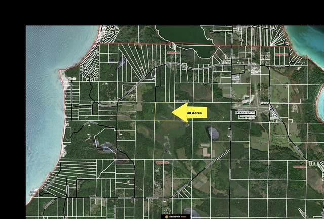 40 Acres Cole's Road, Peaine Twp, MI 49782 (#66021026806) :: The Alex Nugent Team | Real Estate One