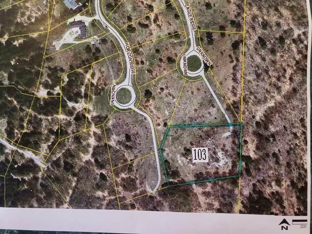 Eagle Ridge Circle, Onekama Twp, MI 49675 (#67021027155) :: Novak & Associates