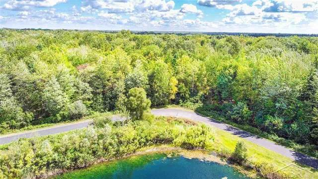 5 Widgeon Way, Richland Twp, MI 48626 (#61050048176) :: Real Estate For A CAUSE