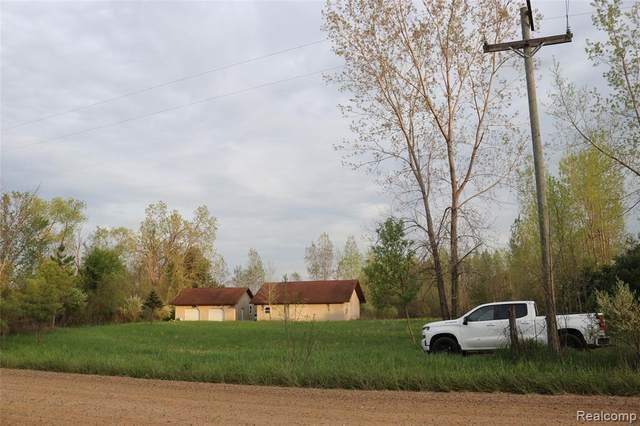 5185 Piersonville Road, Marathon Twp, MI 48421 (#2210055619) :: The Vance Group   Keller Williams Domain