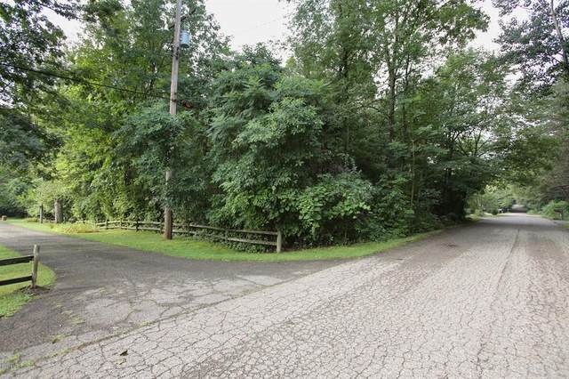 Sterling Avenue, Richland Twp, MI 49083 (#66021027703) :: Real Estate For A CAUSE