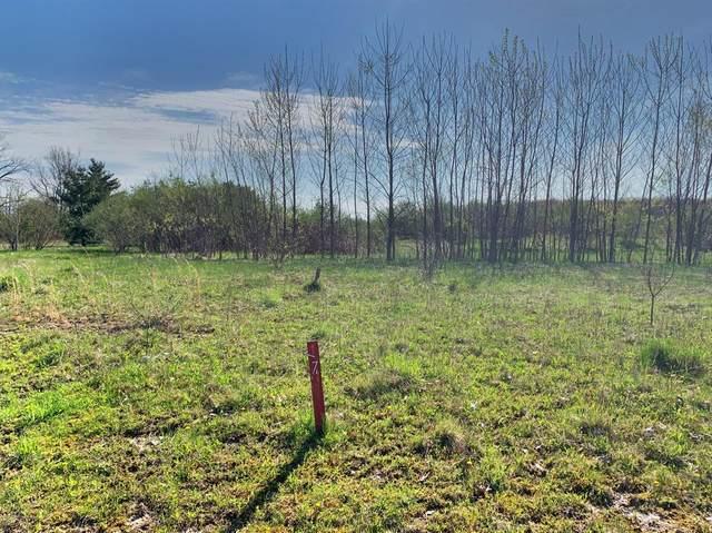 17 Jane Way, Chikaming Twp, MI 49115 (#69021027935) :: Duneske Real Estate Advisors