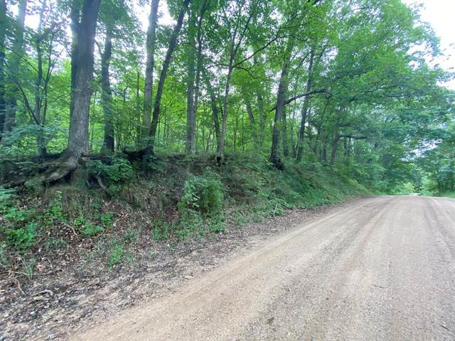 Holden Road, Assyria Twp, MI 49021 (#66021032436) :: Real Estate For A CAUSE