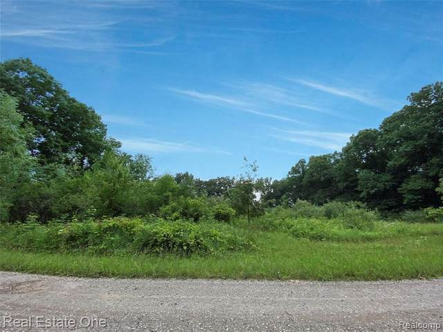 00 N. Truhn Road, Howell Twp, MI 48169 (#2210056742) :: Real Estate For A CAUSE
