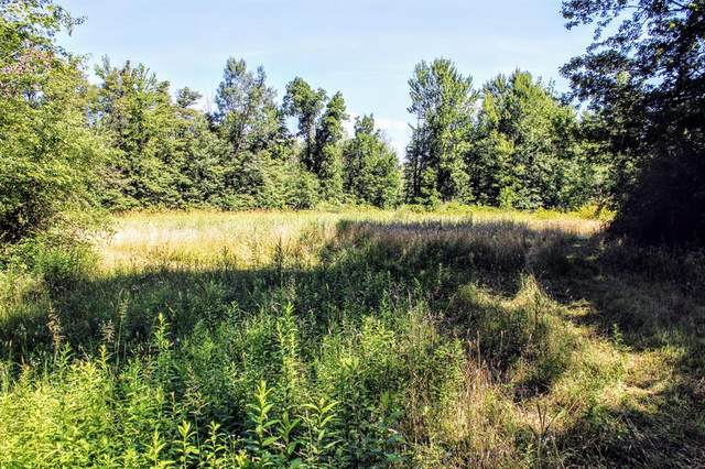 00 44th Ave Avenue, Paw Paw Twp, MI 49079 (#68021033760) :: Real Estate For A CAUSE