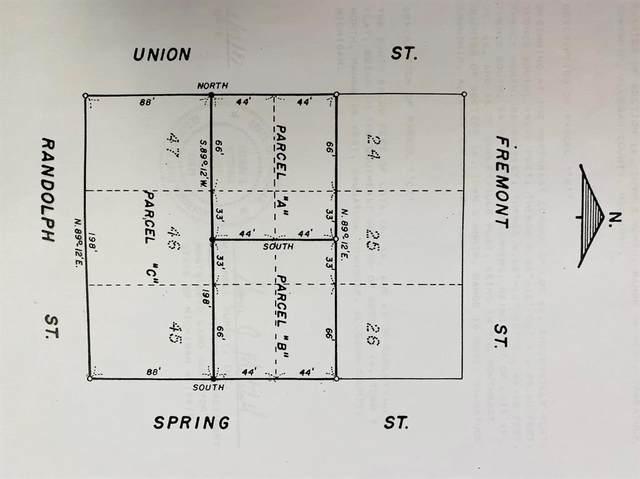 76 Spring Street, DOUGLAS VLLG, MI 49406 (#71021033850) :: Novak & Associates