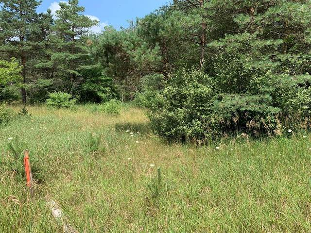 Lot 18 Porter Road, Logan Twp, MI 49402 (#67021078042) :: Real Estate For A CAUSE