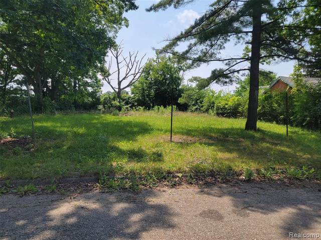 1229 Cass, Mt. Morris Twp, MI 48505 (#2210058616) :: Real Estate For A CAUSE