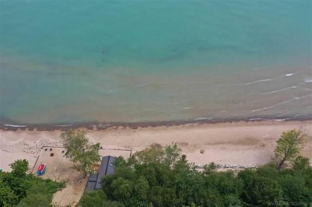 1875 S Lakeshore, Sanilac Twp, MI 48419 (#58050049468) :: Duneske Real Estate Advisors