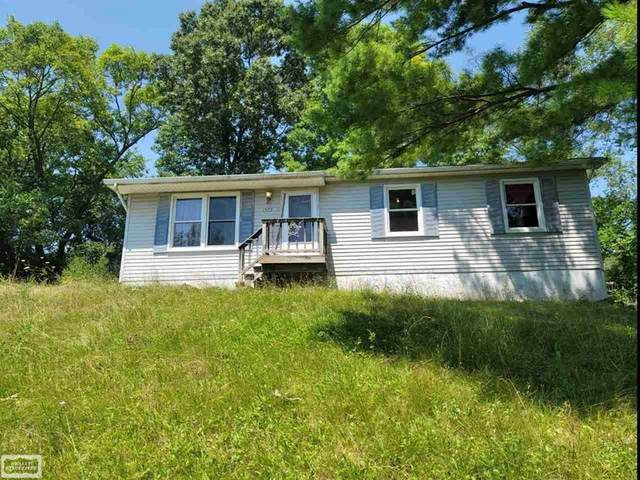 1393 Viefield Dr, Lake Orion, MI 48362 (#58050049533) :: Real Estate For A CAUSE