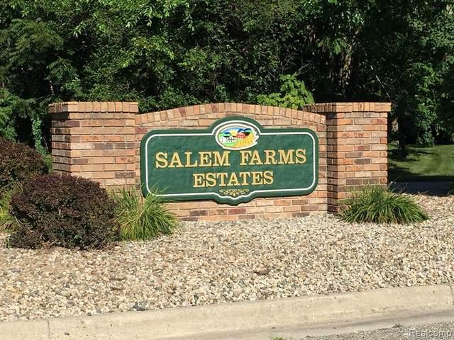 6443 Sunset Drive, Salem Twp, MI 48178 (#2210059836) :: Duneske Real Estate Advisors