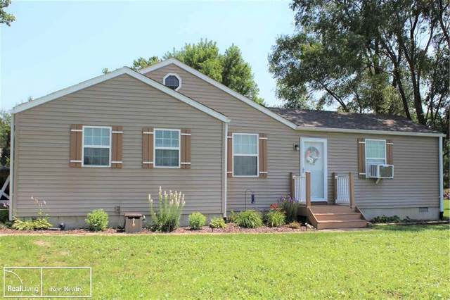 4564 Cribbins Rd, Clyde Twp, MI 48049 (#58050049780) :: Duneske Real Estate Advisors