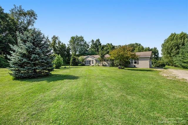8234 Coon Lake Road, Iosco Twp, MI 48137 (#543282924) :: The Alex Nugent Team | Real Estate One