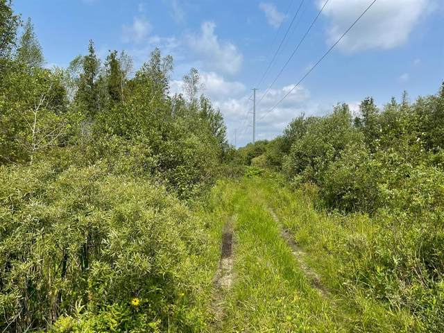 Laverne Road, Norman Twp, MI 49689 (#67021097964) :: The Vance Group | Keller Williams Domain