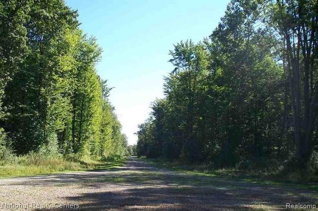 VL Brenner Lane, ST. CLAIR TWP, MI 48079 (#2210065353) :: National Realty Centers, Inc