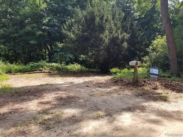 65 South Elm Grove Road, Elba Twp, MI 48446 (#2210066386) :: The Vance Group   Keller Williams Domain